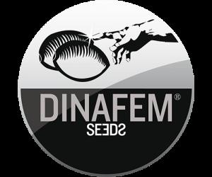 dinafem-seedbank_1