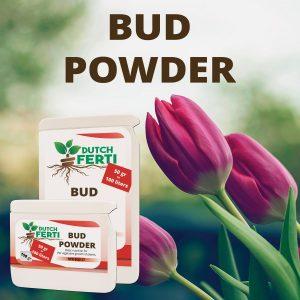 Dutch Ferti Bud Powder