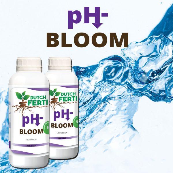Dutch Ferti Ph Bloom